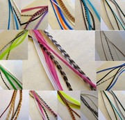 Grizzly Feathers for  Sale