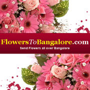 Floral fancy hits Bangalore all the way